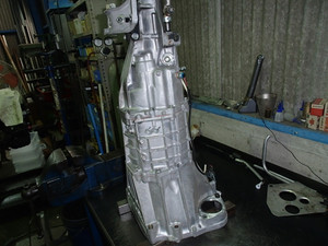 P6030002